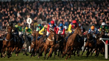 March: On the attack – the runners for the Coral Cup drill away from the stands which could only be those of the Cheltenham Festival. A circuit to go and everything to play for
