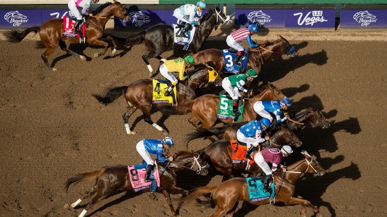 November: From the roof - the Breeders? Cup Mile start at Santa Anita. The elevation makes the picture. They are 50 yards from the start, the colours are rich against the sand of the track and the winner is to be Tamarkuz, nearest to us in the blue silks