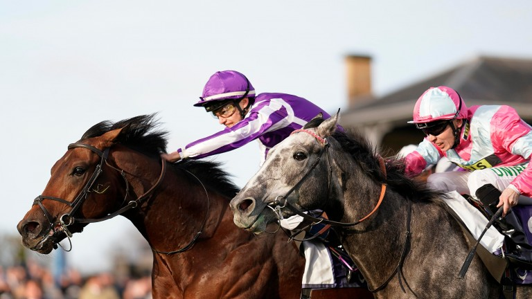 Magna Grecia gets his head in front at Doncaster to give Bob Scarborough a tough decision to make