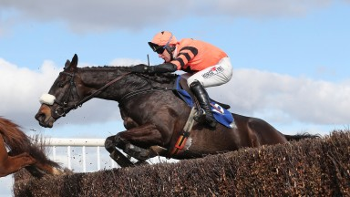A big handicap chase could well be won this season by Jett