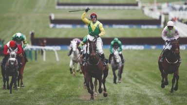 Sizing John: the former Gold Cup hero could return in the Kinloch Brae at Thurles rather than Leopardstown