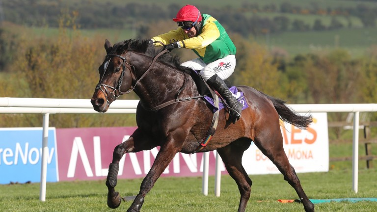 Top hurdler: Supasundae could run in the Morgiana Hurdle