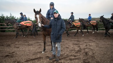 Rhinestone: Joseph O'Brien is hoping the step up in trip will suit his exciting novice hurdler