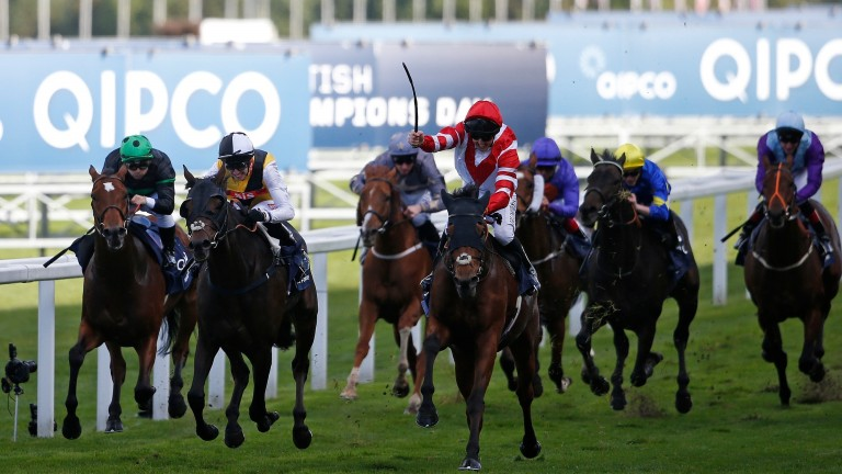 Sheikhzayedroad: Group 1 winner retired by David Simcock