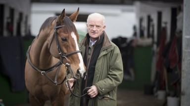 Faugheen: may try record back-to-back successes in the Morgiana Hurdle at Punchestown