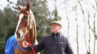 Colin Tizzard and Gold Cup hero Native River, last year's stable star now working towards a repeat performance