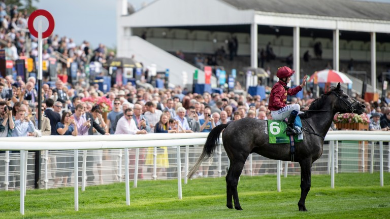 Roaring Lion: strikes a pose after landing the Juddmonte Inernational at York
