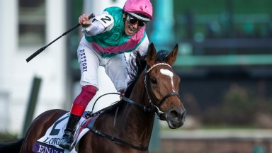 "Frankie Dettori and Enable land the Breeders' Cup Turf: the jockey said: ""She's amazing. She's very special"""
