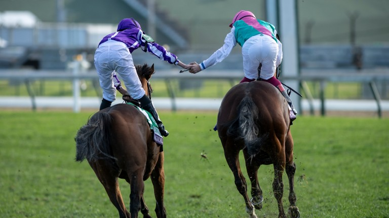 Magical (left) ran Enable close in the Breeders' Cup Turf two years ago, and she'll likely be joining Mogul for this year's running