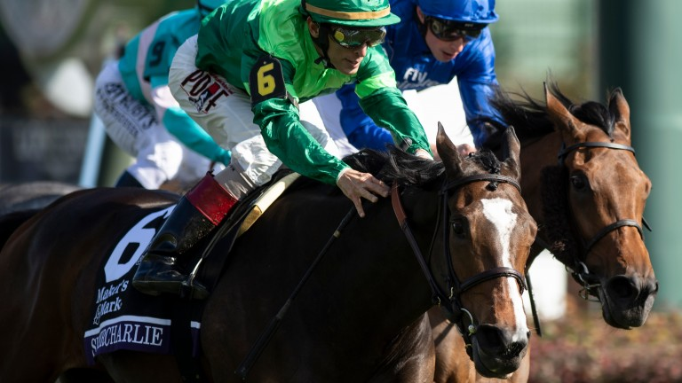 Sistercharlie (6) denies Wild Illusion in the Filly & Mare Turf