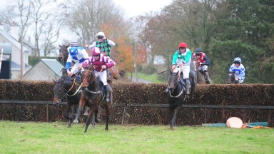 Lisronagh Stone (centre): won the Goffs five-and-six year old geldings' maiden