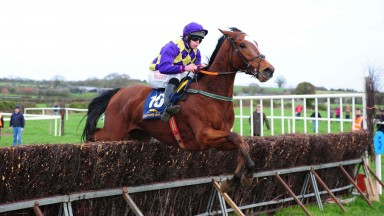 Lou Trek: made all to win eased down