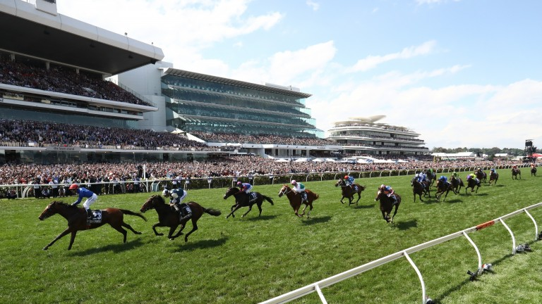Cross Counter surges home to win the Melbourne Cup
