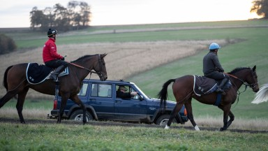 Nicky Henderson watches first lot at Seven Barrows