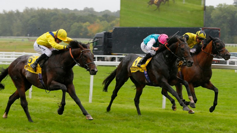 Mirage Dancer (centre) finishes second to Young Rascal (near side) in the Legacy Cup