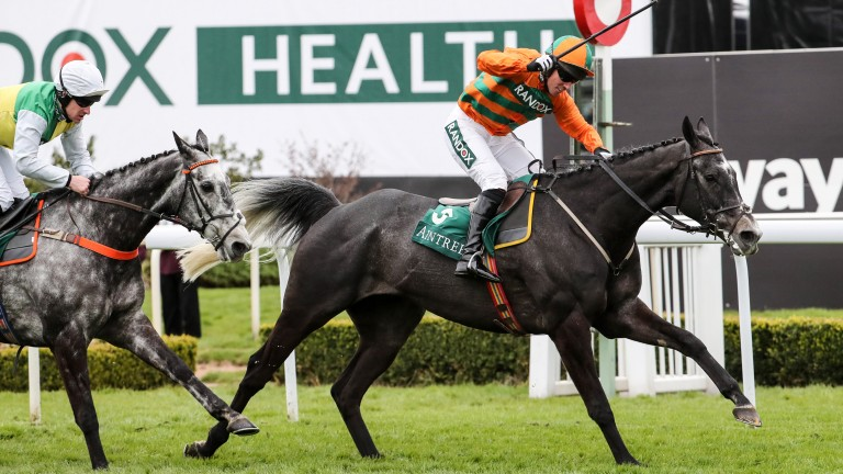 """Flying Angel: """"He never does much wrong and ran well, staying on, in the Ultima last year"""""""