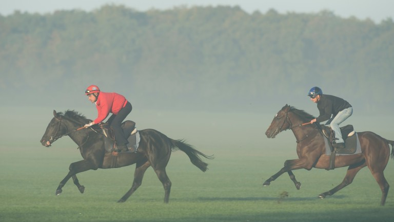 The Arthuis report says major training centres such as the one at Chantilly need to be restructured and costs lowered