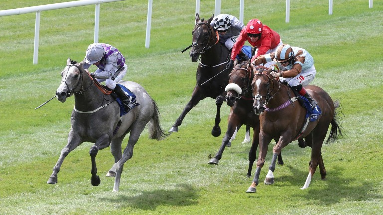 Havana Grey (left) sprints clear in the Group 2 Sapphire Stakes