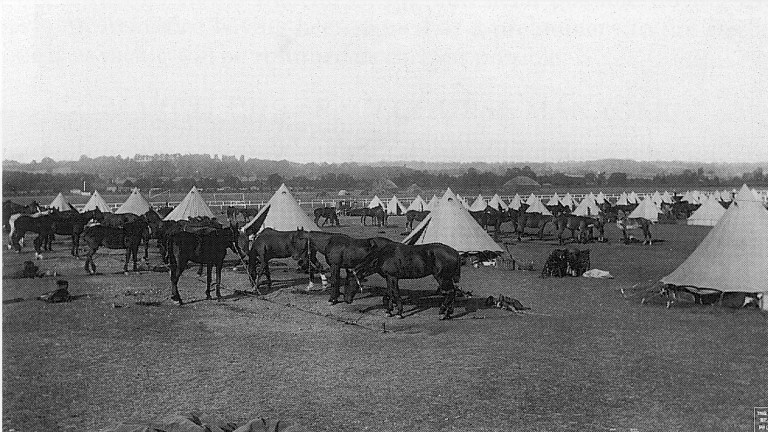 Newbury racecourse was used as a base for horses during World War I