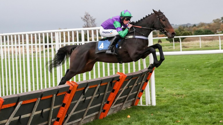 Finian O'Toole partnered One Night In Milan to victory at Kelso in October