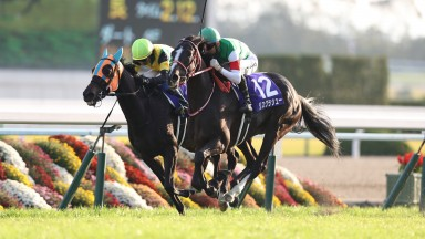 Lys Gracieux (green cap) wins the Queen Elizabeth II Cup at Kyoto racecourse for Joao Moreira and Yoshito Yagahi, 11.11.2018