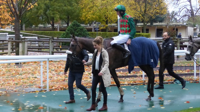 James Reveley and Master Dino return to the winner's enclosure at Auteuil