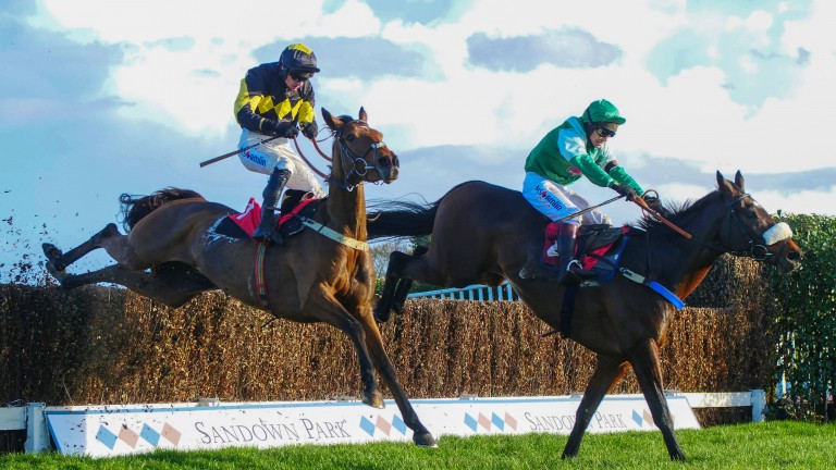 Thomas Patrick (far side) and Elegant Escape tackle the last in the Future Stars Chase