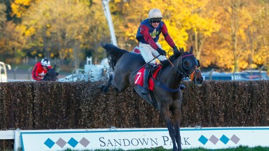 Loose Chips out on his own in the Pete The Feat Veterans' Handicap Chase