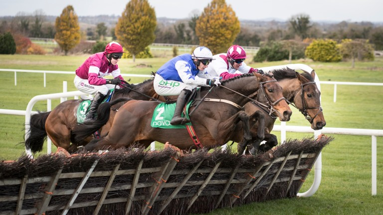 Aramon (blue): will be partnered by Ruby Walsh for the first time