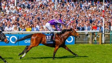 Saxon Warrior justified winter favouritism for the Guineas but failed to score again in 2018