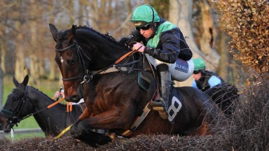 Jamie Codd became only the second rider to reach 900 point-to-point winners with victory on Pegase Amour