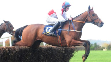 Fearless Fracas and Garry Murphy on their way to victory in the four-year-old maiden at Ballinaboola