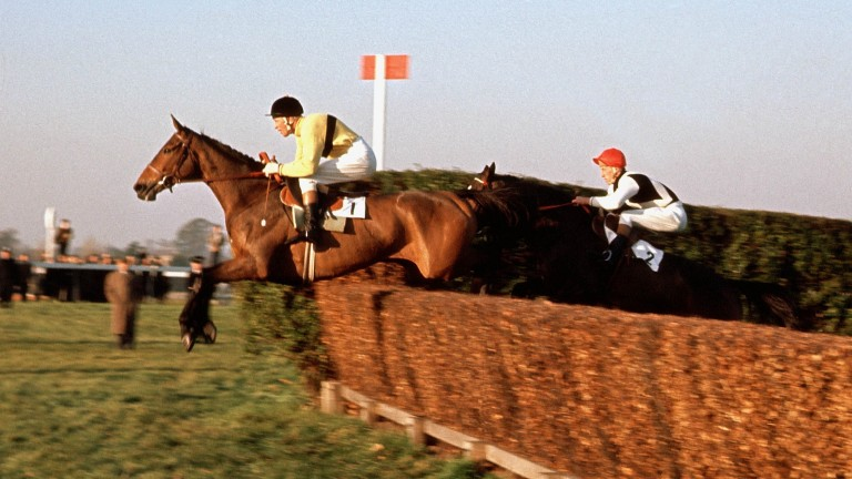 Sandown Park 1965The Gallagher Gold CupArkle & Milhouse at the last jump.