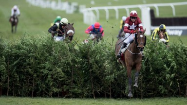 Tiger Roll and Keith Donoghue on their way to winning the Cheltenham Festival cross-country in March