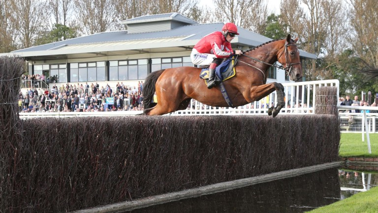 Ballyandy will go close in the BetVictor Gold Cup if he jumps fluently