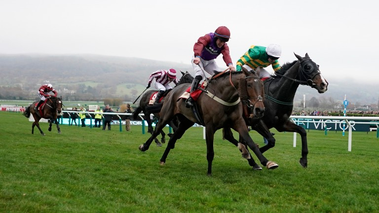 CHELTENHAM, ENGLAND - NOVEMBER 16: Mark Walsh riding Josies Orders (green) clear the last to win The Glenfarclas Cross Country Handicap Chaseat Cheltenham Racecourse on November 16, 2018 in Cheltenham, England. (Photo by Alan Crowhurst/Getty Images)