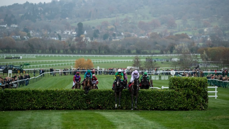 Josies Orders (Mark Walsh,centre) jumps the double spread hedge in the Cross Country ChaseCheltenham 16.11.18 Pic: Edward Whitaker