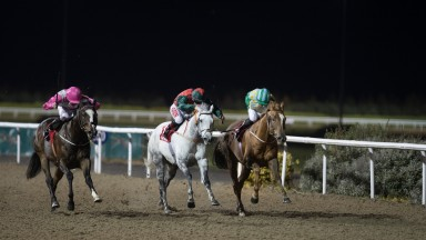 Equitant (far side) and Shane Crosse gives Joseph O'Brien his 100th Flat winner of 2018 at Dundalk on Friday