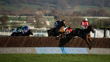 Coneygree leads Rock The Kasbah at Cheltenham