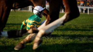 CHELTENHAM, ENGLAND - NOVEMBER 17: Barry Geraghty falls from Movewiththetimes at Cheltenham Racecourse on November 17, 2018 in Cheltenham, England. (Photo by Alan Crowhurst/Getty Images)