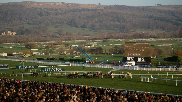 Cheltenham: the course will be required to identify emerging risk areas