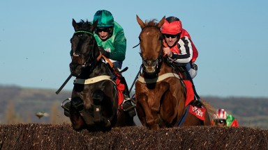 CHELTENHAM, ENGLAND - NOVEMBER 18: Daryl Jacob riding Sceau Royal (green) clear the last to win The Shloer Chase from Simply Red (R) at Cheltenham Racecourse on November 18, 2018 in Cheltenham, England. (Photo by Alan Crowhurst/Getty Images)