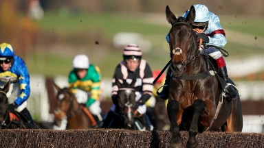Lalor measures another fence perfectly on his way to victory at Cheltenham