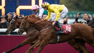Sea Of Class and Enable could renew rivalry in the Arc next year
