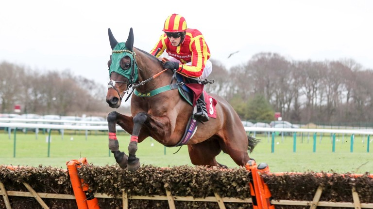 Top Ville Ben: set for the Towton at Wetherby next weekend