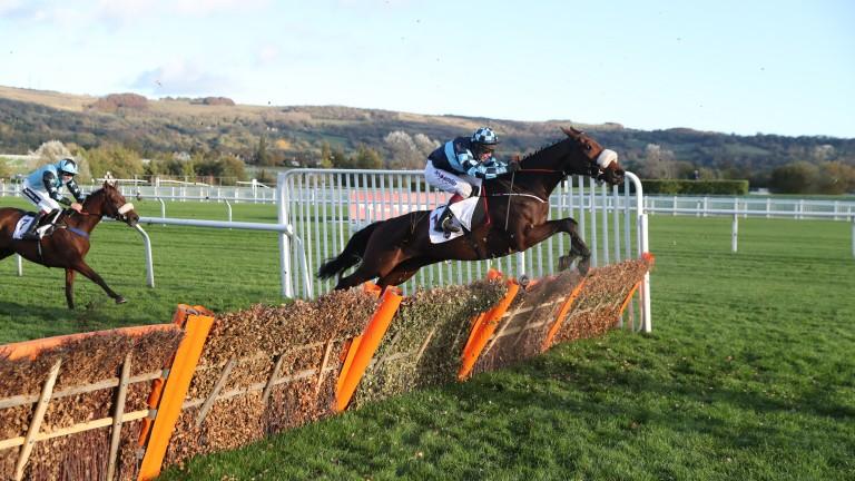 Thomas Darby: back over hurdles