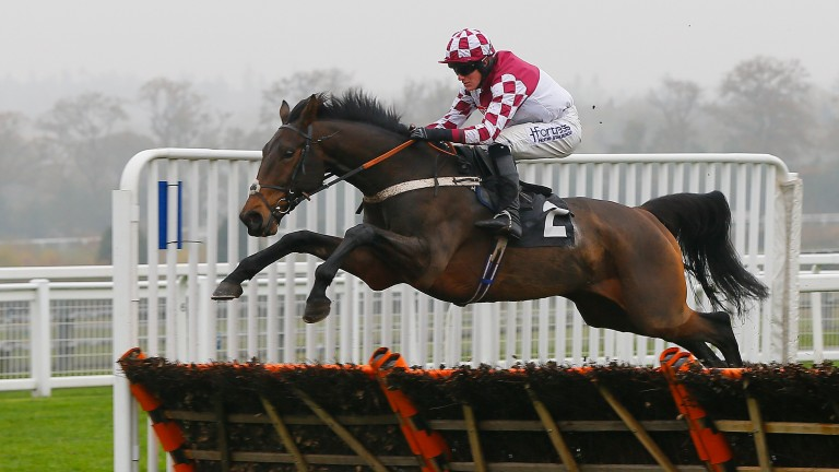 Jolly's Cracked It: winning the Introductory Hurdle on Friday's Ascot card four years ago