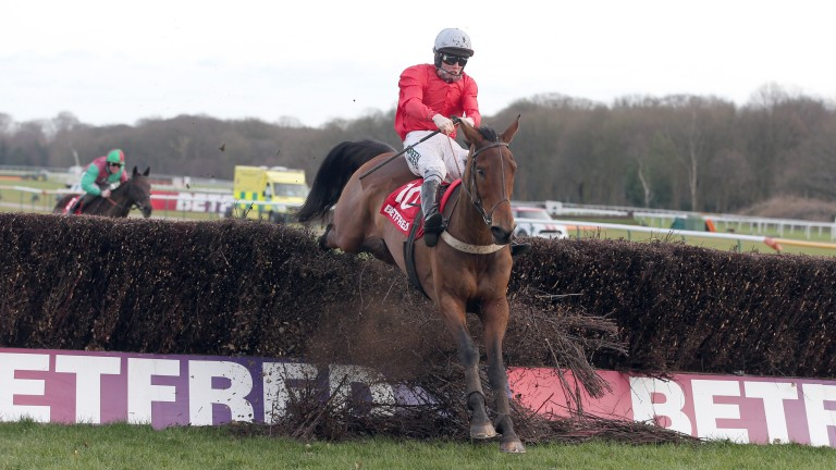 Well Refreshed ploughs through the final fence en route to victory in the Grand National Trial in 2013