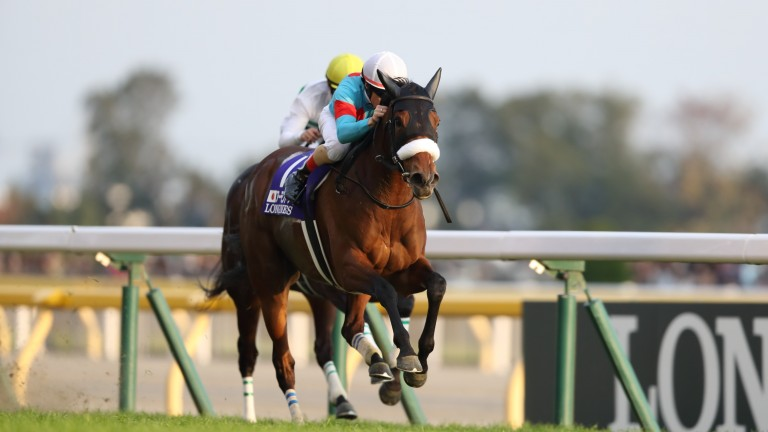 Almond Eye was hugely impressive in Sunday's Japan Cup in Tokyo