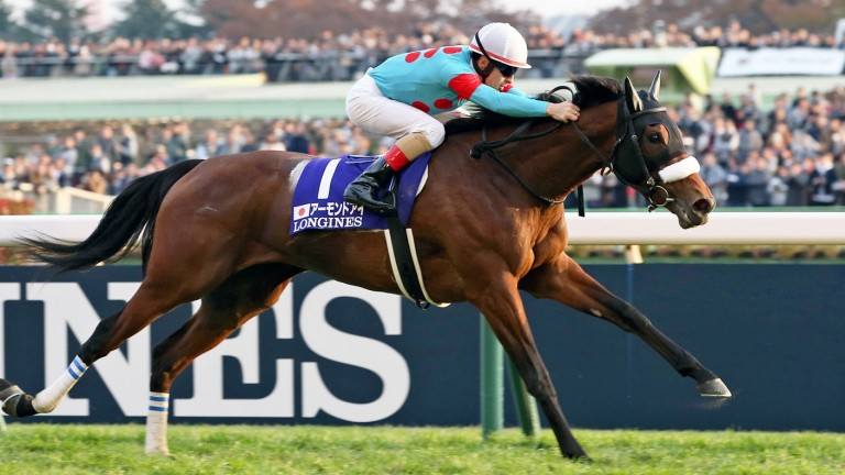 Almond Eye and Christophe Lemaire stretch out to Japan Cup glory